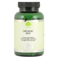 Organic Kelp Ekologiczny Jod 350 µg Algi Brunatne 120 kapsułek G&G