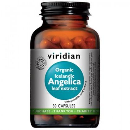 Organic Icelandic Angelica leaf extract Arcydzięgiel litwor oraz ekstrakt z pestek dyni Ekologiczny 30 kapsułek Viridian