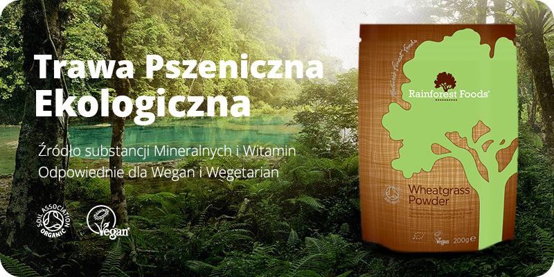 Ekologiczna Trawa Pszeniczna BIO Sproszkowana 200g Rainforest Foods